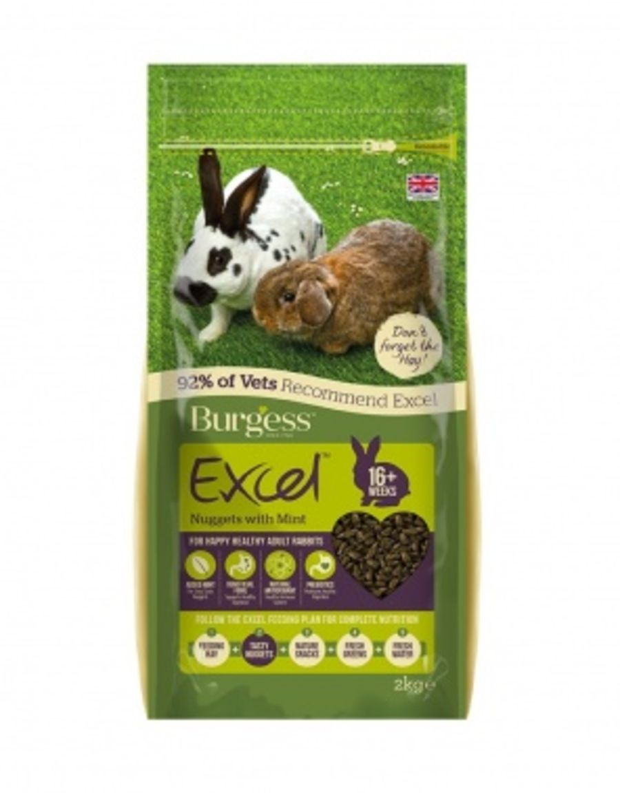 Burgess Excel Rabbit Nuggets with Mint 2kg