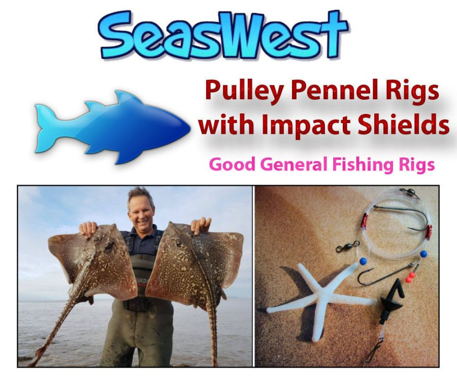 Pulley Pennel Rigs with Impact Shields