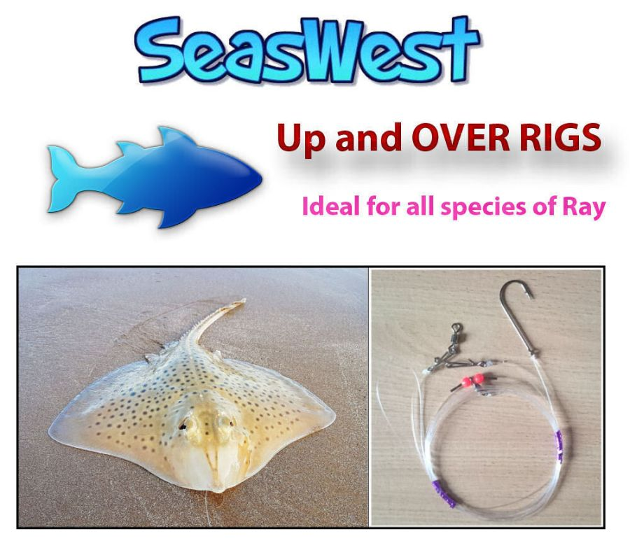 Seaswest Up and Over Rig - Made in Britain
