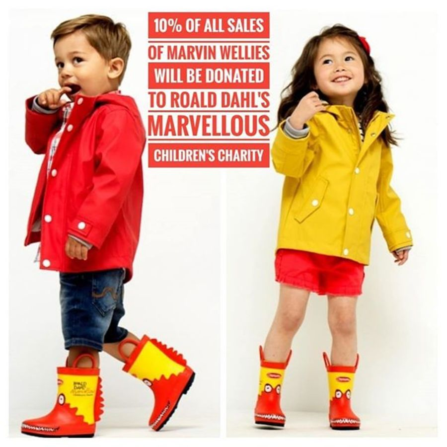 Chipmunks Wellies and Slippers  - soled 4 kids