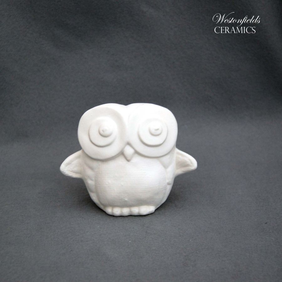 Ceramic Pottery Bisque Biscuit Ware Pack Ready To Paint a Pot Your Own DIY Owl