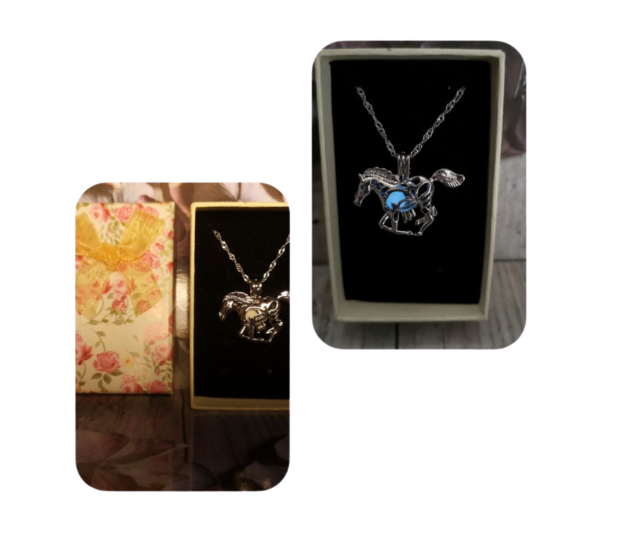 Glow in the dark Horse pendant and chain gift boxed