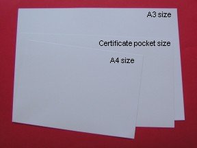 INSERT CARD - WHITE A3 SIZE