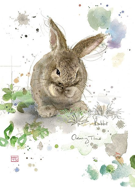 Cleaning Rabbit