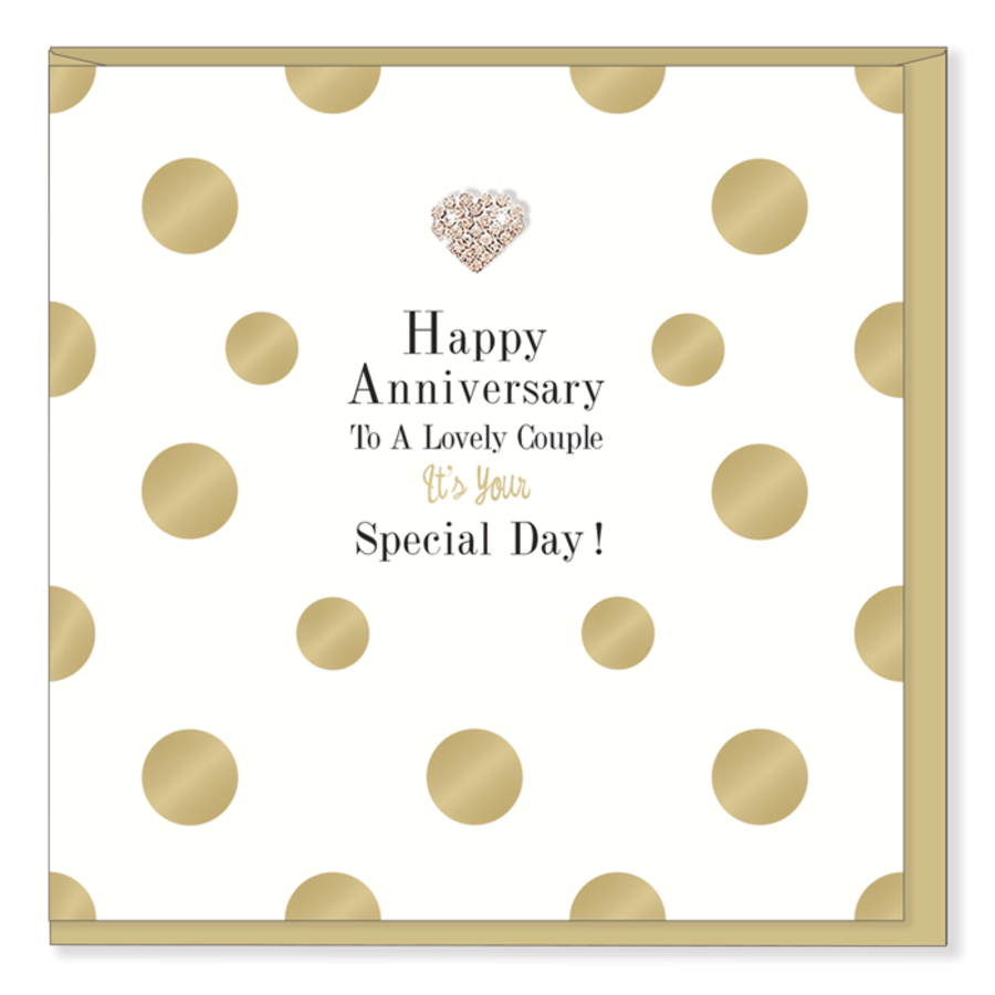 Happy Anniversary to a Lovely Couple Card