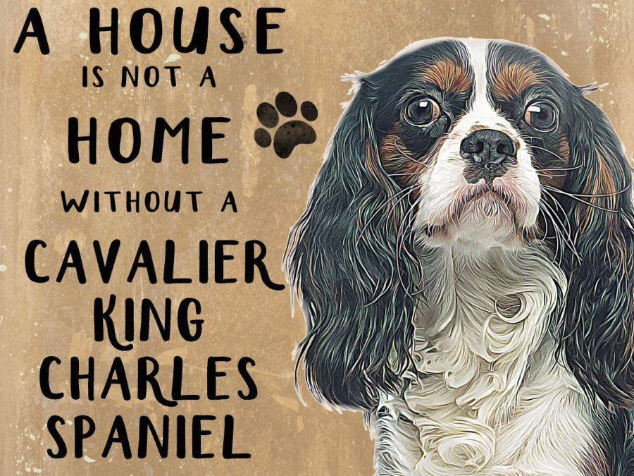 Cavelier King Charles Spaniel Hanging Sign