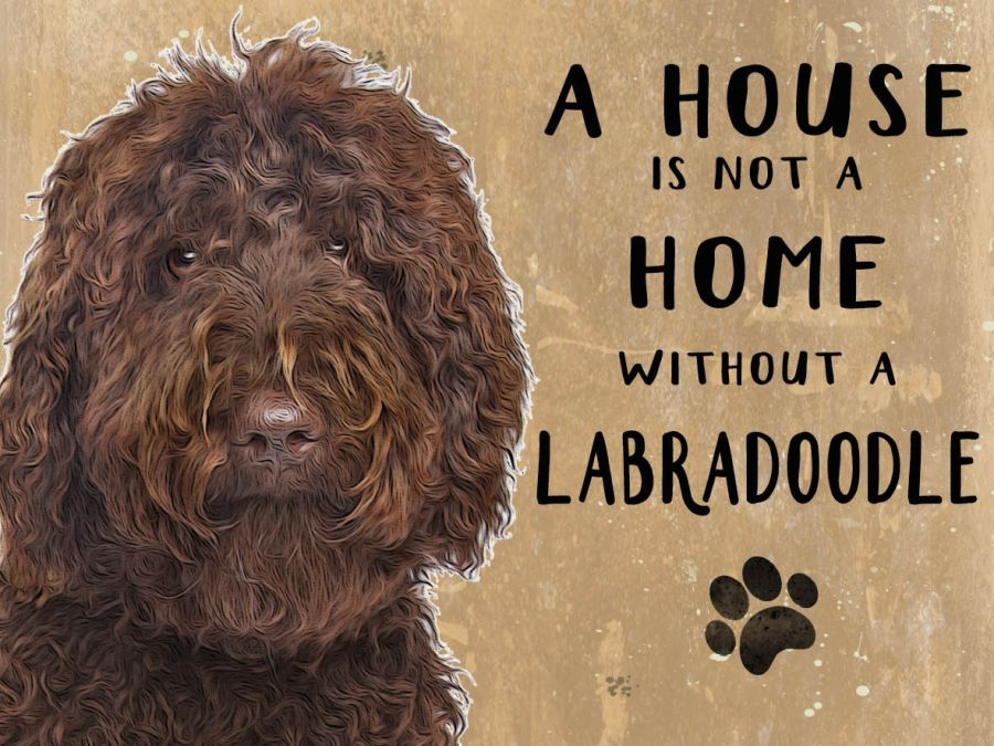 Labradoodle Hanging Sign