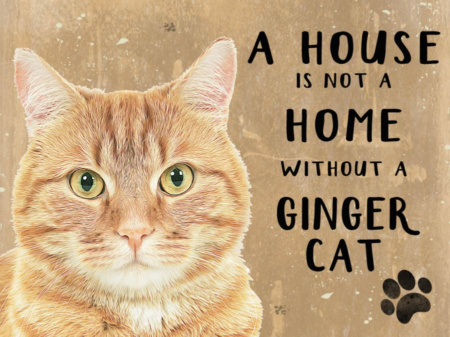 Ginger Cat Hanging Sign