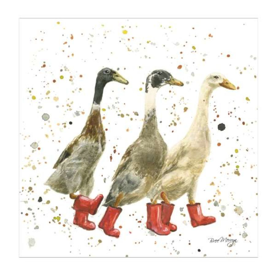 The Three Duckgrees Greetings Card