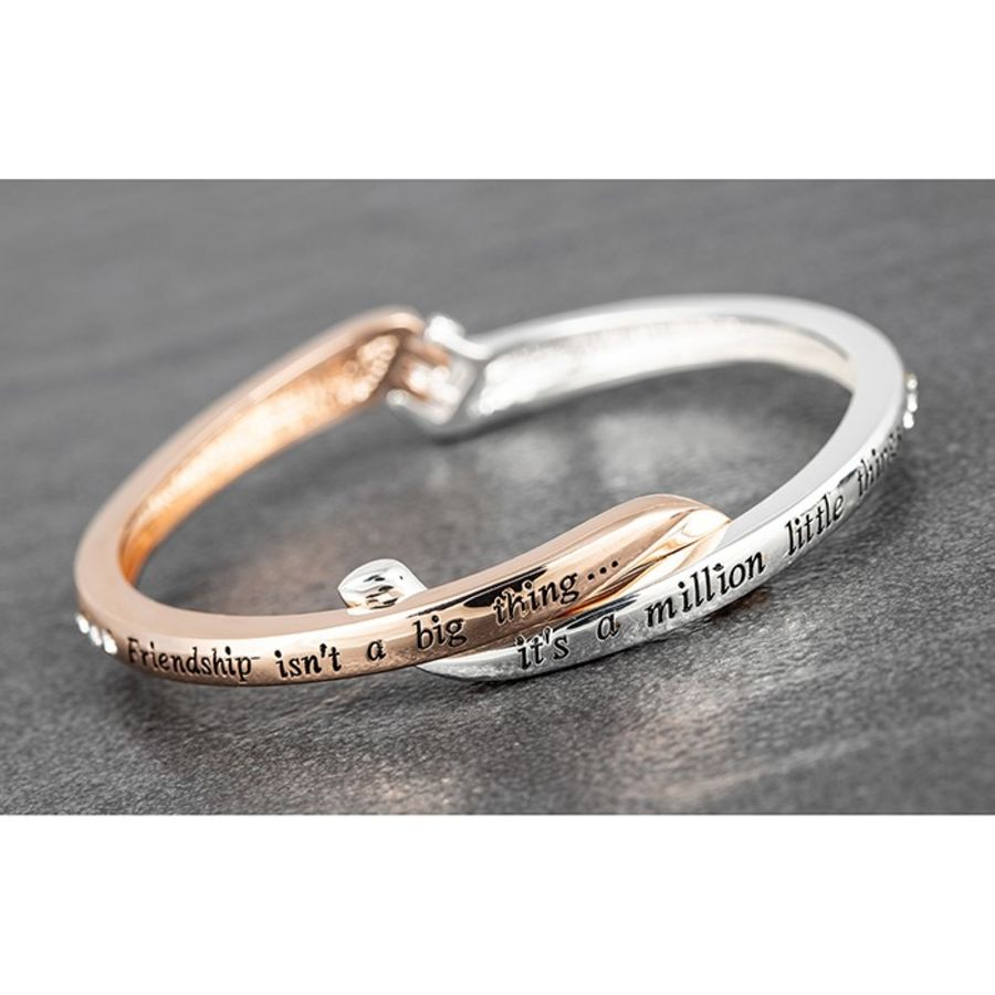 Silver Plated and Rose Gold Plated Friendship Bangle
