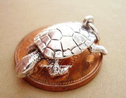Moving Tortoise Silver Charm