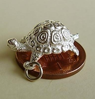 Tortoise Silver Charm