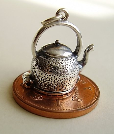 Kettle Of Fish Silver Charm