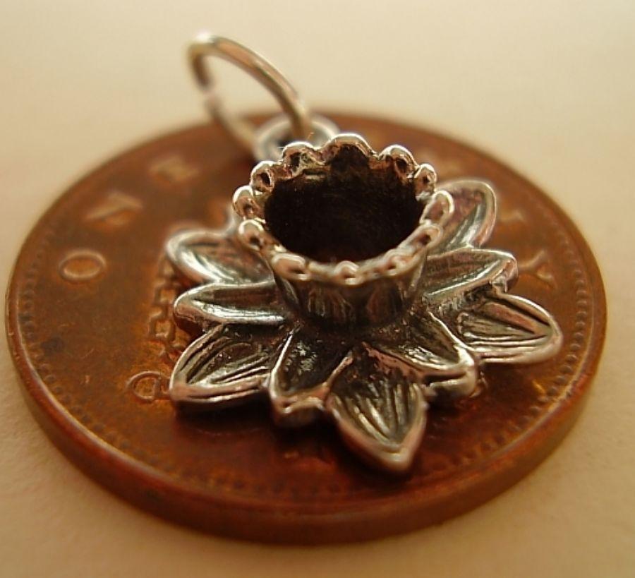 Daffodil Silver Charm