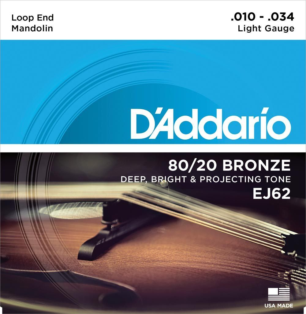 D'Addario 80/20 Bronze Loop End Mandolin Strings 10-34 Light Gauge EJ62
