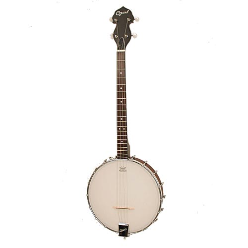 Ozark 2102T Tenor Banjo