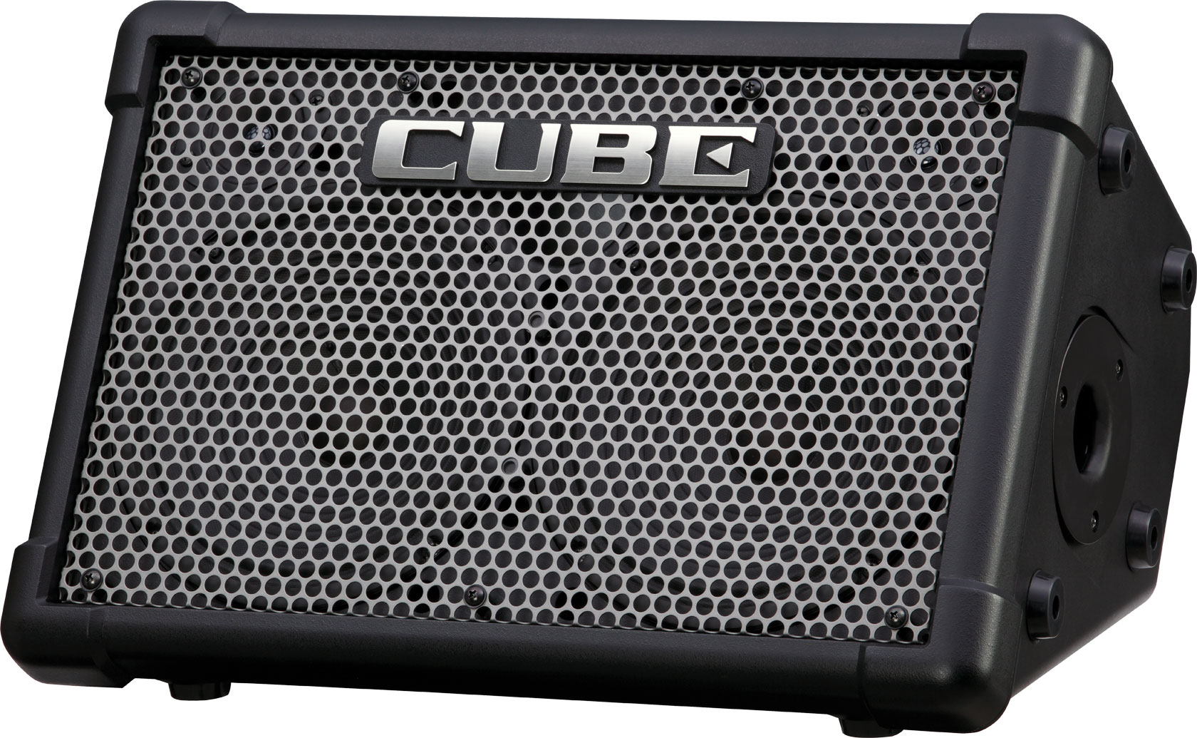 Roland Cube Street EX - Battery Powered Stereo Amp