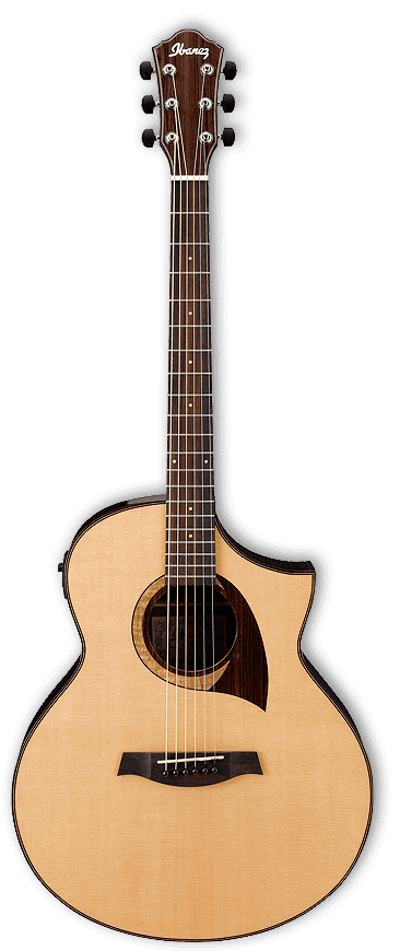 Ibanez AEW22CD Electro Acoustic Ex-Display