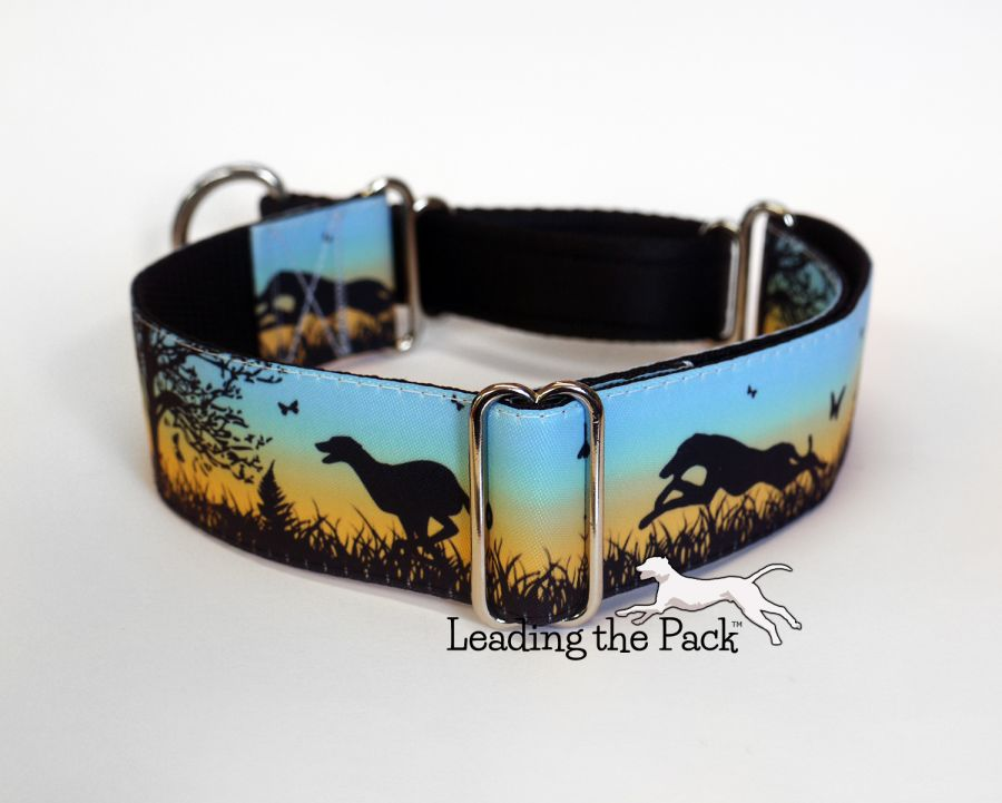 40mm Summer meadow greyhound collars