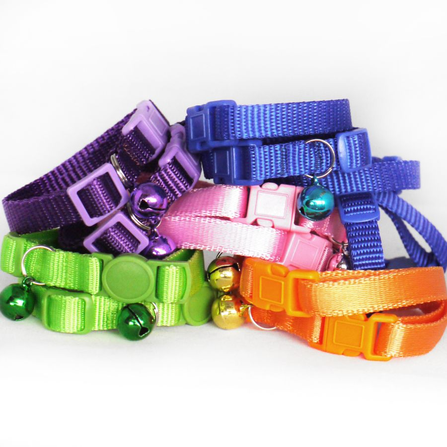 10mm plain webbing collars and leads