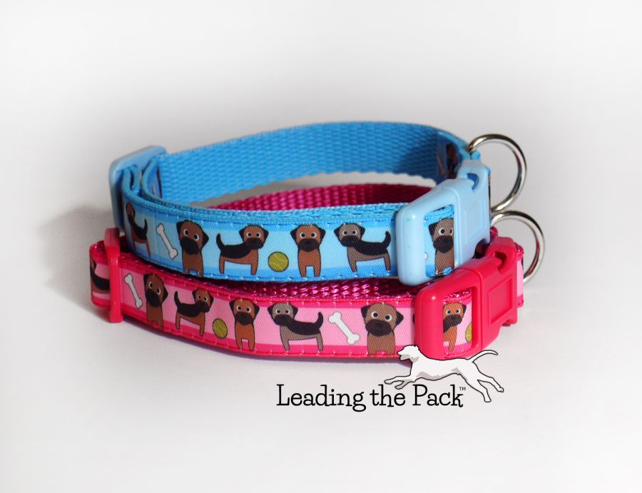 15mm border terrier collars & leads