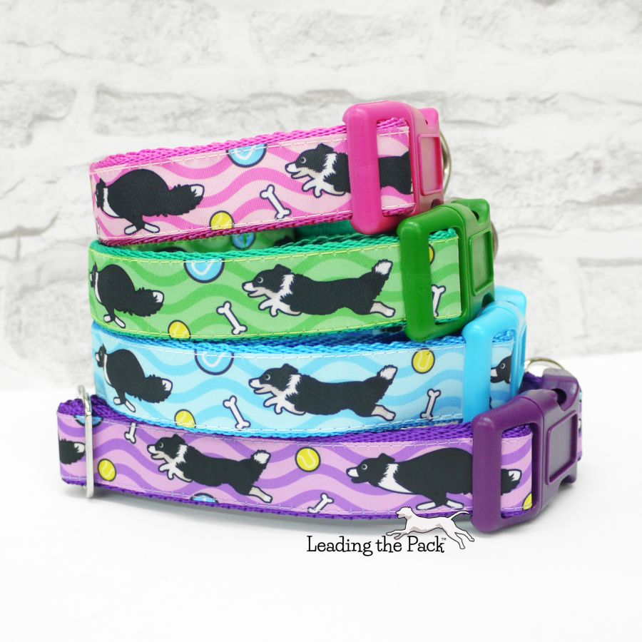 20/25mm border collie collars & leads