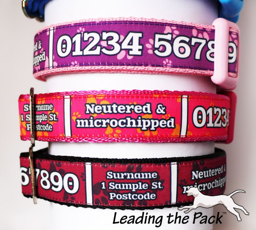 20/25mm personalised contact details collars