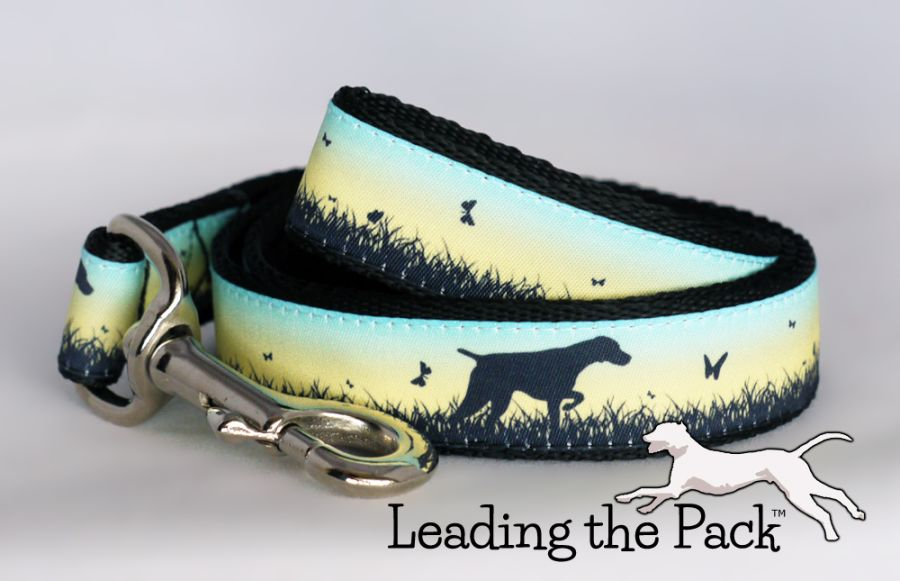 20/25mm Spring meadow pointer collars & leads