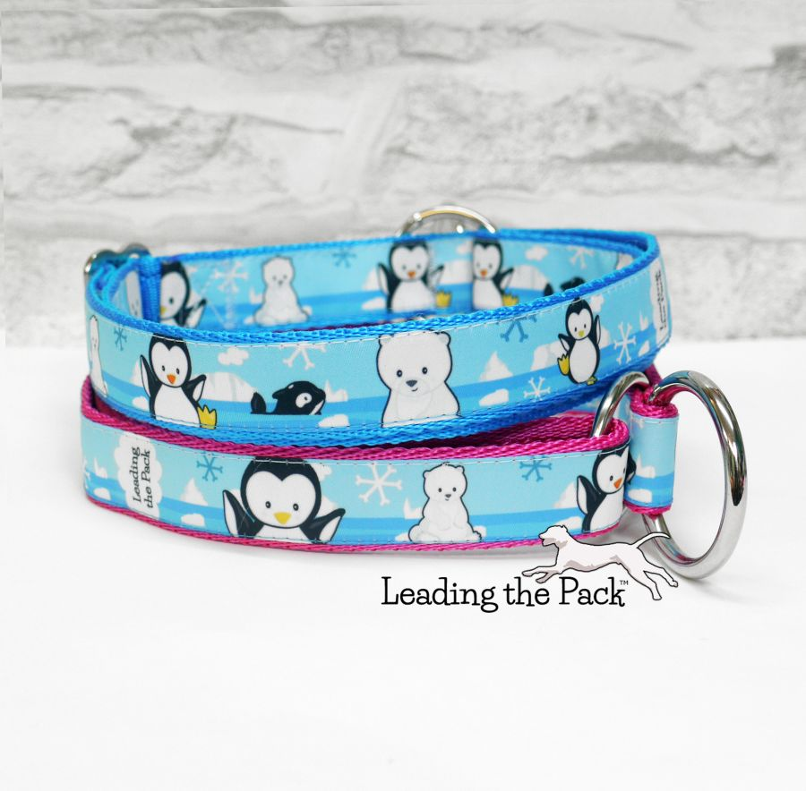 20/25mm arctic friends collars & leads