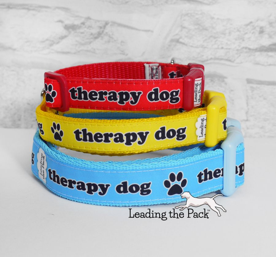 20/25mm therapy dog collars & leads