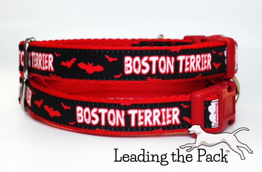 20/25mm bats boston terrier collars & leads
