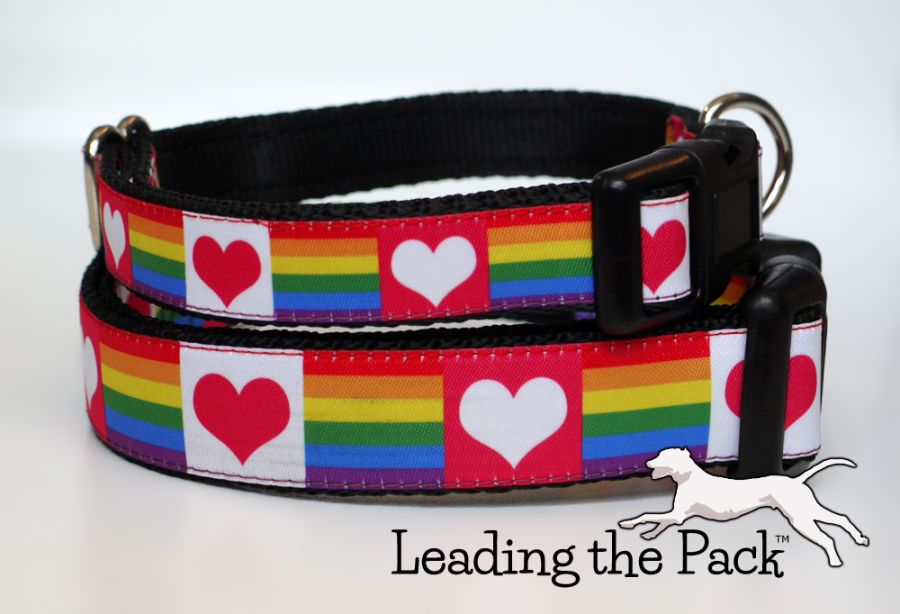 20/25mm rainbow and hearts collars & leads