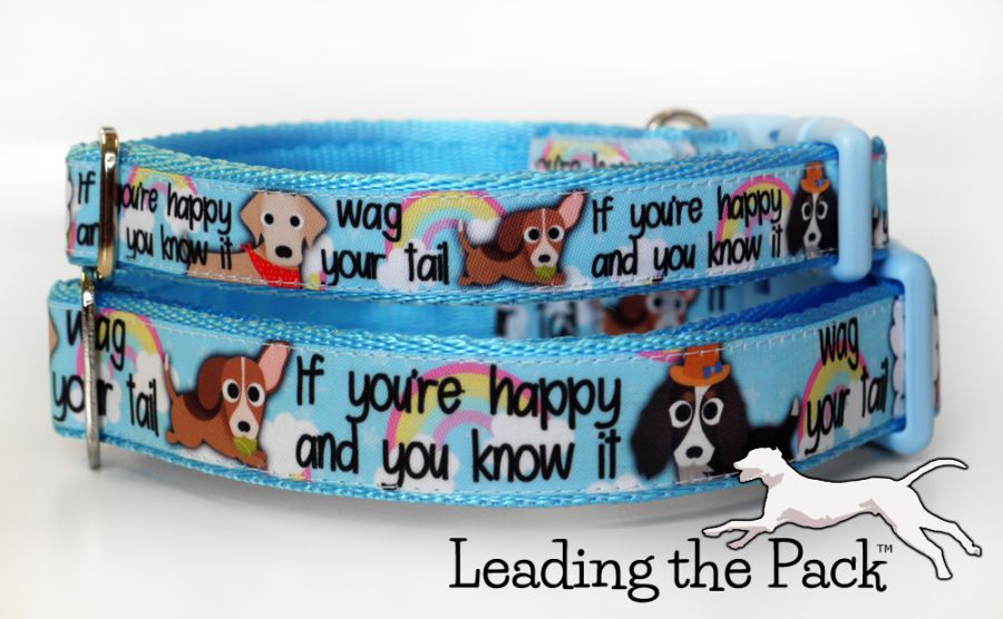20/25mm if you're happy collars & leads