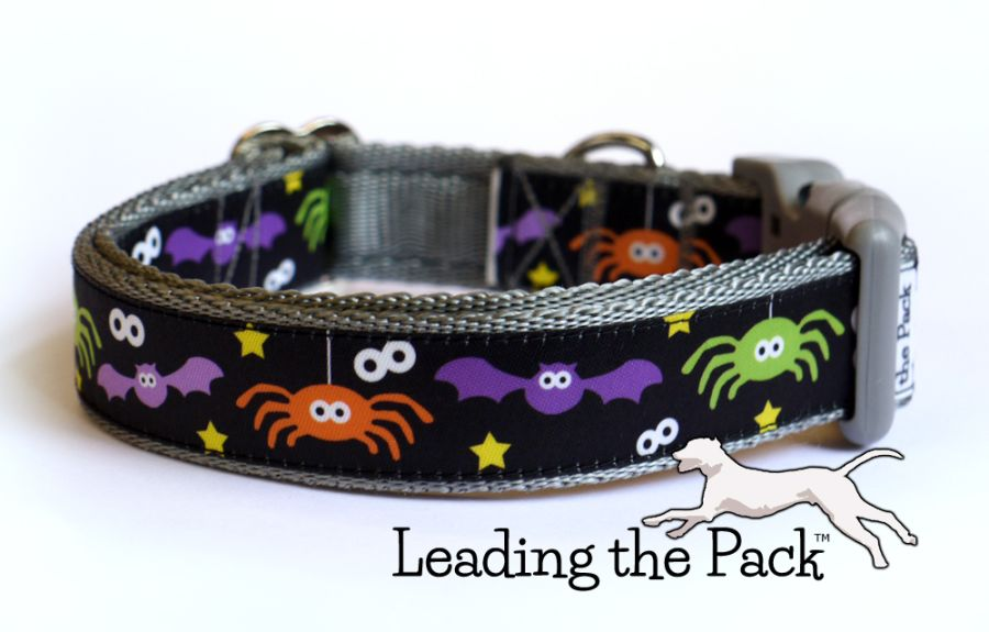 20/25mm bats and spiders black collars & leads