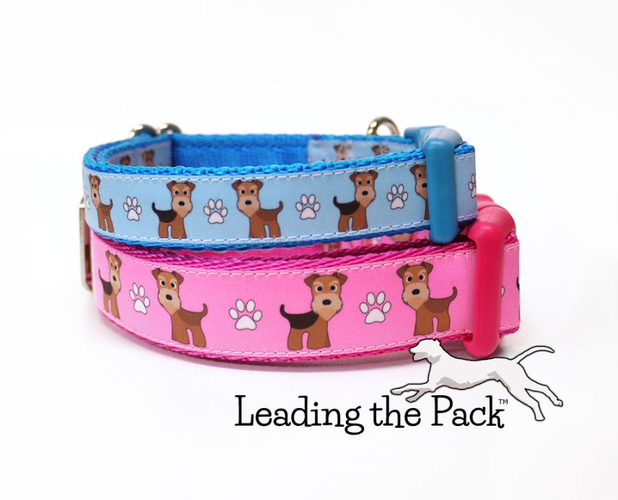 20/25mm airedale or lakeland terrier collars & leads