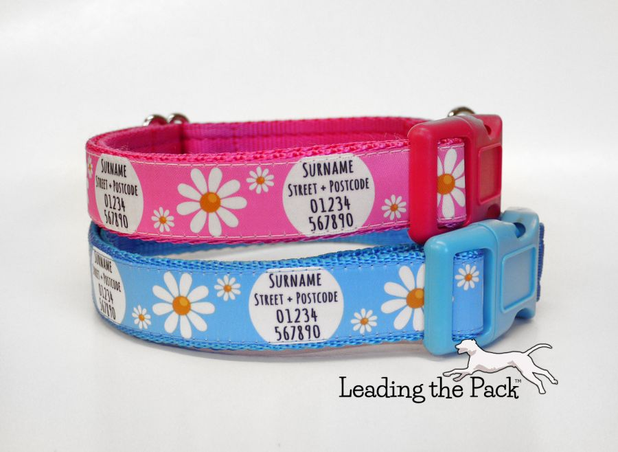 20/25mm personalised contact daisies collars & leads