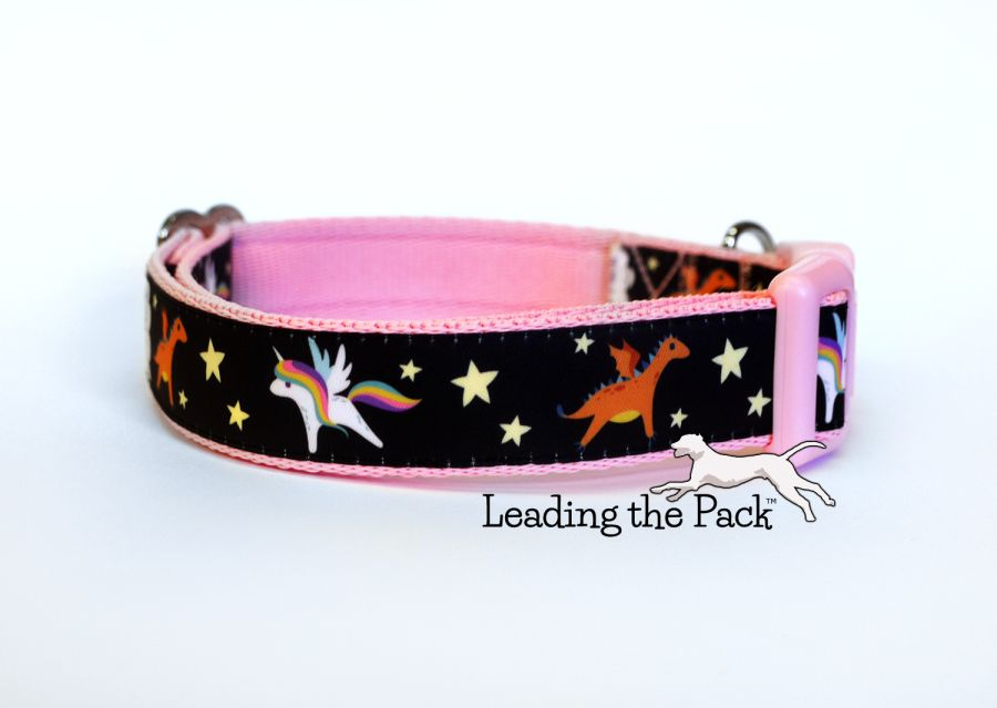 20/25mm dragon and unicorn collars & leads