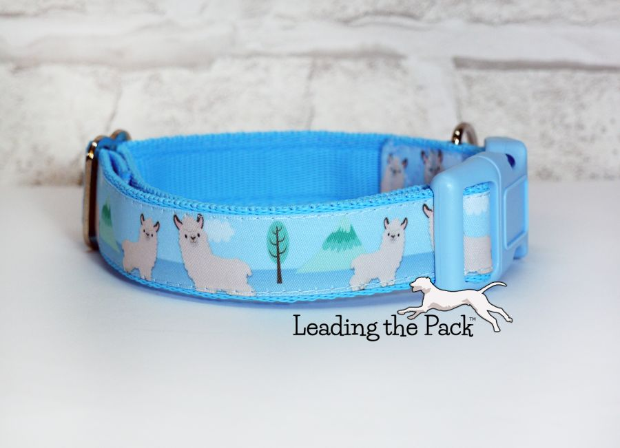 20/25mm llama collars & leads