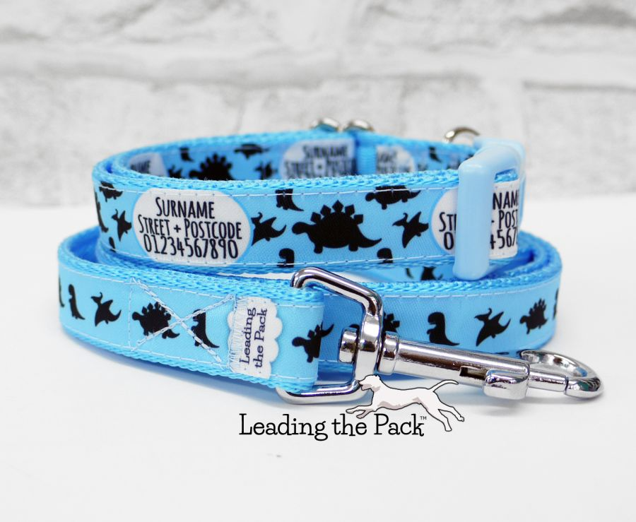 15mm personalised contact dinosaurs collars & leads