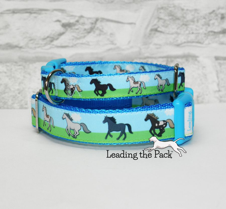 20/25mm horses collars & leads