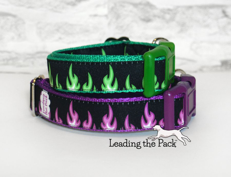 20/25mm flames collars & leads