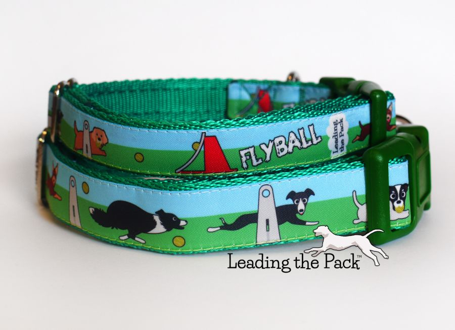 20/25mm flyball collars & leads