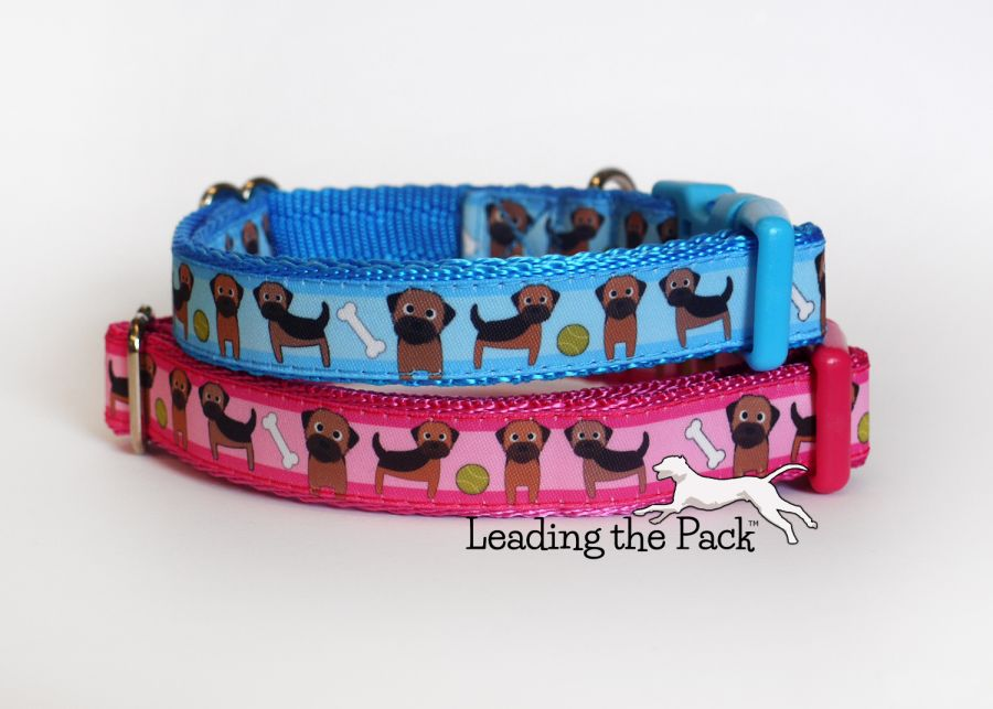20/25mm border terrier collars & leads