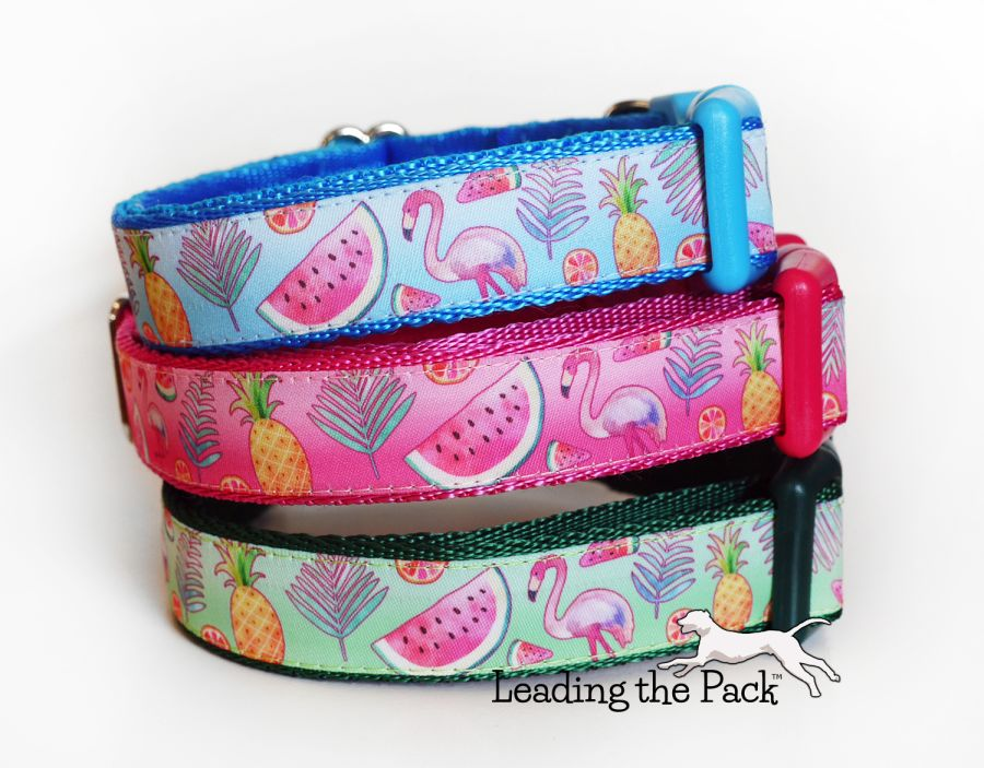 20/25mm tropical flamingo collars & leads