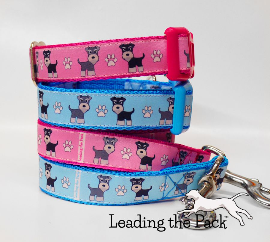 20/25mm schnauzer collars & leads