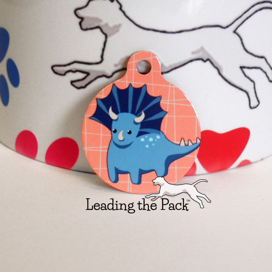 Dinosaurs round shaped tags