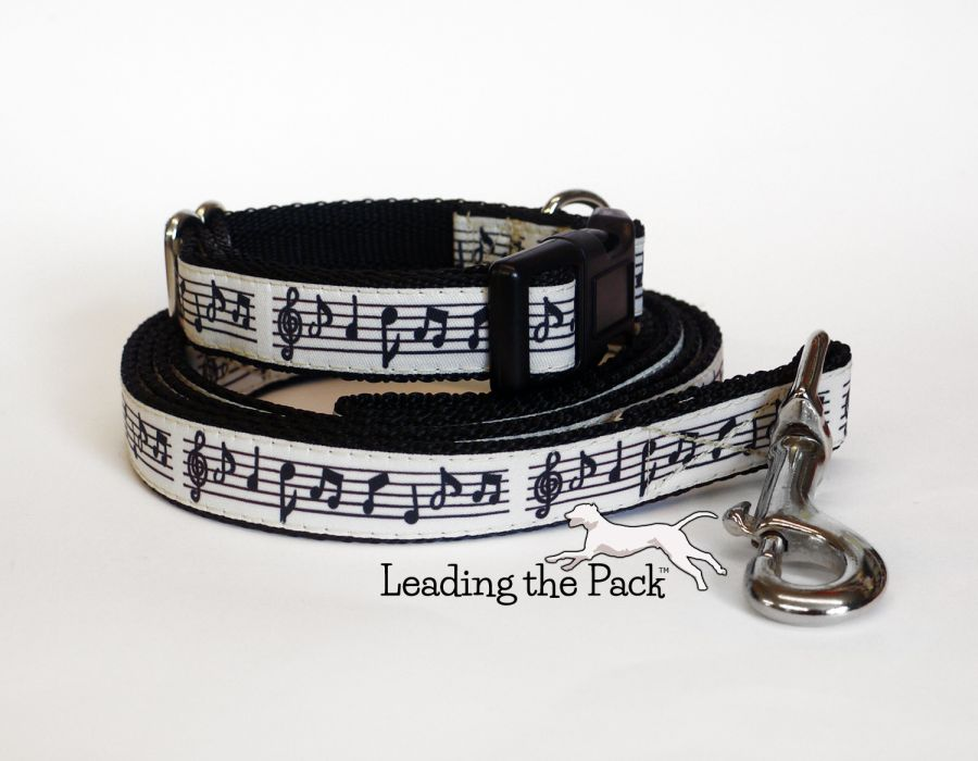 20/25mm music collars & leads