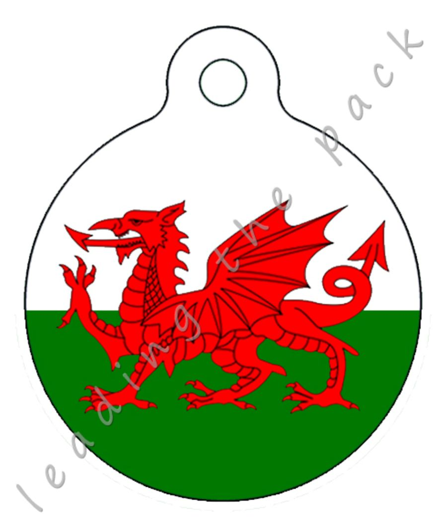Welsh dragon round shaped tags