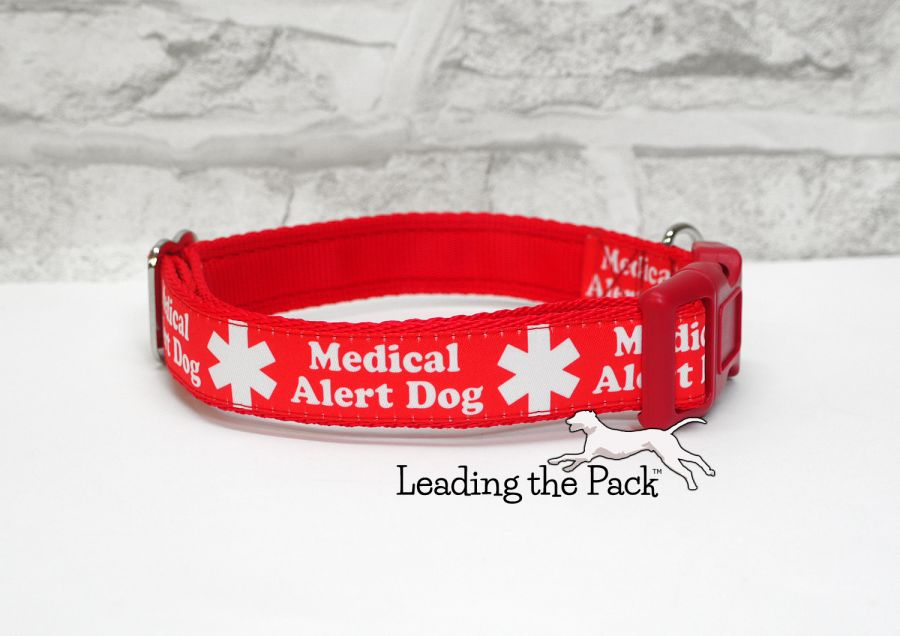 20/25mm medical alert dog collars & leads