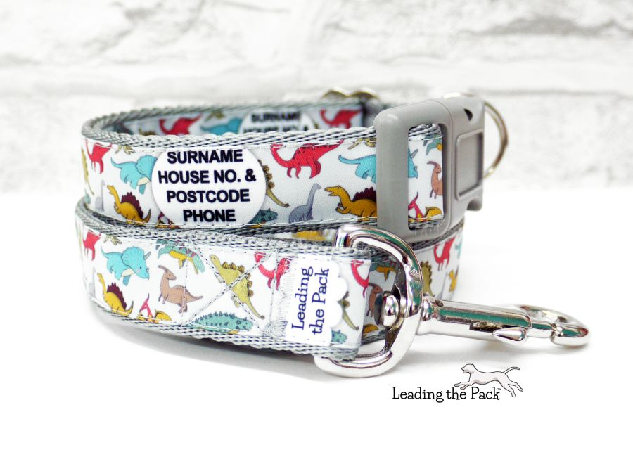 20/25mm personalised contact dinosaurs toss collars & leads
